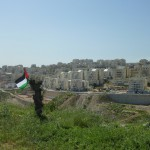 "The Popular Committee of Bil'in : a peaceful exemplary struggle against ""the wall"" in Palestine"
